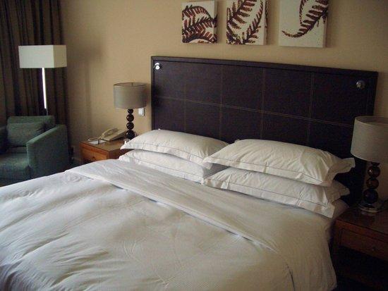 Hilton Hotel Dresden: Guaranteed a Good Nights Sleep