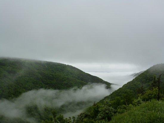 Cape Breton Highlands National Park: Fog Rolling In