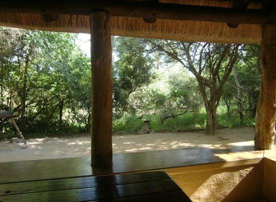 Bateleur Bushveld Camp: Uitzicht vanuit huisje nr. 6 van Bateleur Boskamp