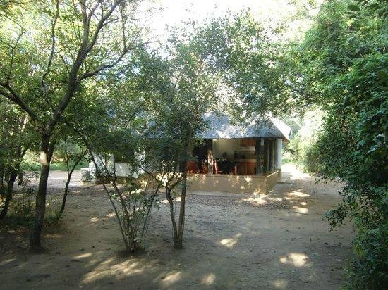 Bateleur Bushveld Camp: Huisje nr. 6, Bateleur Boskamp (maart 2014)