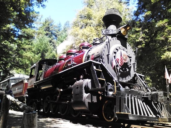 Skunk Train: Engine turnaround