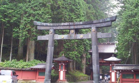 Nikko National Park: torii