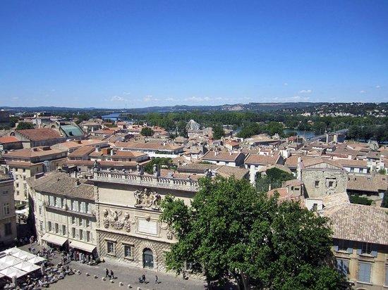 Palais des Papes : vista terrazza torre su palazzo dell' horloge
