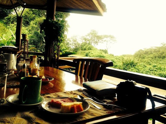Majestic Lodge: Coffee, fruit, and views