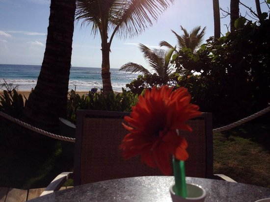 Excellence Punta Cana : Breakfast by the beach