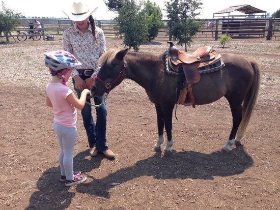 Sunriver, OR : Pony rides!