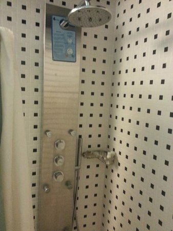 Hotel Indigo Miami Lakes: Cool Shower
