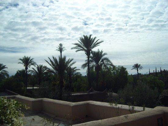 Villa 55 : En pleine palmeraie