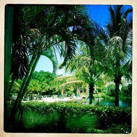 Club Med Sandpiper Bay: Vue de la plage depuis la terrasse du restaurant