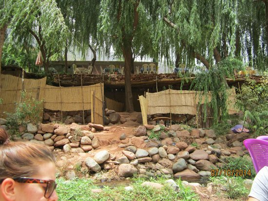 4X4 Camel - Private Day Tours : Rest and Relaxation