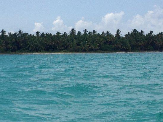 Secrets Royal Beach Punta Cana : The beautiful beach