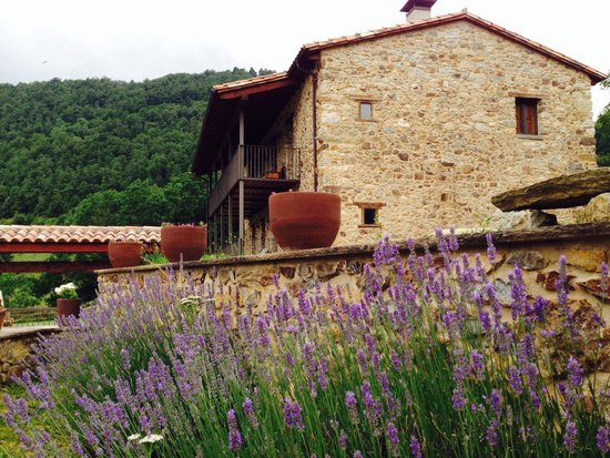 Masia la Casassa : Exteriores jardin