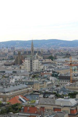 Cathédrale Saint-Étienne (Stephansdom) : Vista dalla torre
