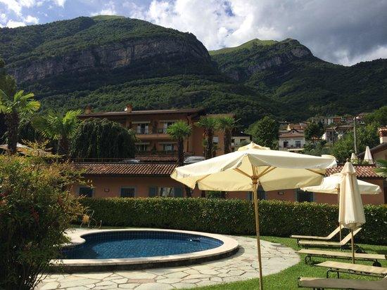 Hotel Villa Edy : Pool and hotel