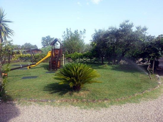 B&B Agriturismo Mammarella: una parte del giardino