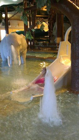 Holiday Inn Hotel & Suites Owatonna: The hippo slide, and the spraying elephant.