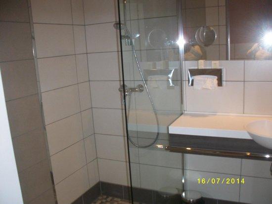 La Villa Des Houx : salle de bain