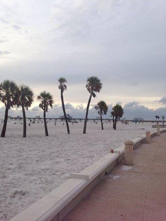Clearwater Beach : Beach