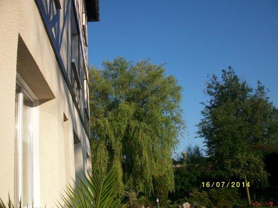 La Villa Des Houx : jardin