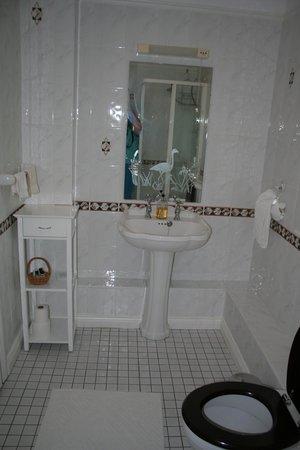 Ross Castle Lodge: Bath view 1