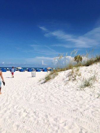 Clearwater Beach : Coming to beach