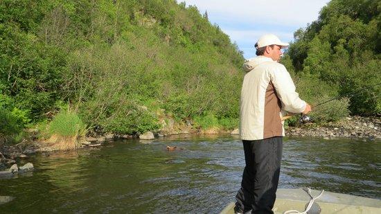Alaska Fishing & Lodging: Fishing with the bears
