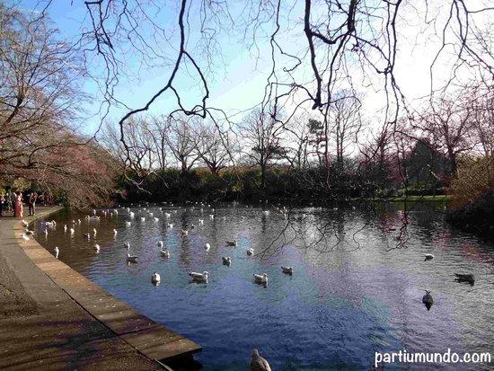 St. Stephen's Green: St. Stephens Green Park 3