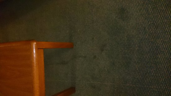 Extended Stay America - Greensboro - Wendover Ave.: stained floor, it was like this throughout the whole room