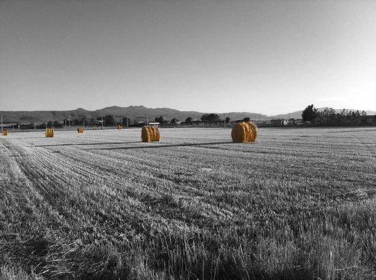 El Linaje de Los Cincosombreros: Labores del Campo