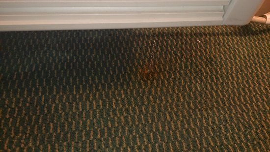 Extended Stay America - Greensboro - Wendover Ave.: leaking air conditioner, from the look at the floor where it had been leaking seems like it was