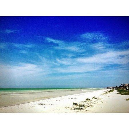 Playa Hotel Villas Delfines