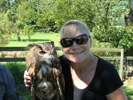 Black Mountains Falconry Centre: The best part was the Owl hug!