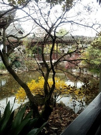 Portland Japanese Garden: every corner a new view