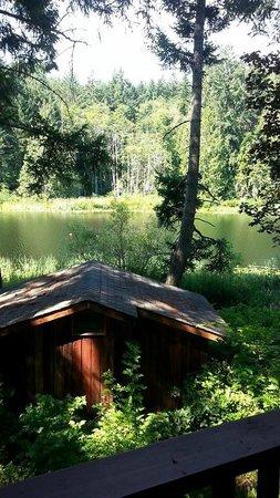 Cusheon Lake Resort : Overlooking the Cusheon Lake