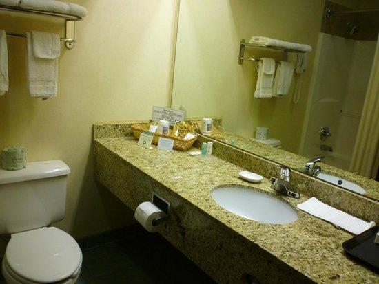 Comfort Inn: Granite countertop
