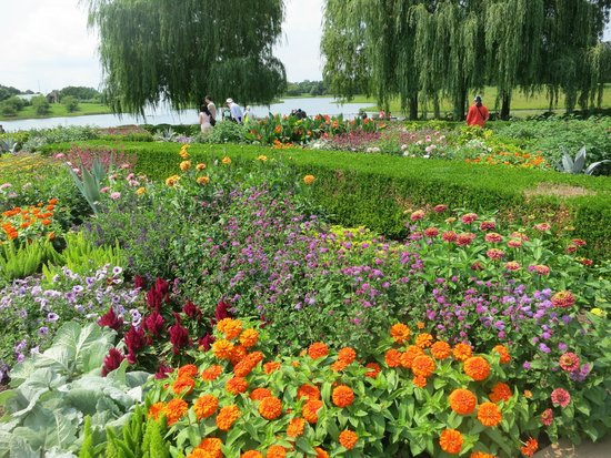 beautiful Summer flowers in bloom - Picture of Chicago Botanic ...