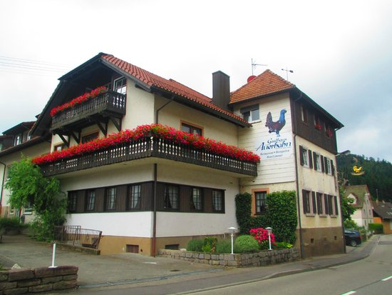 Gasthaus Auerhahn: Auerhahn hotel (seen from the apartment)