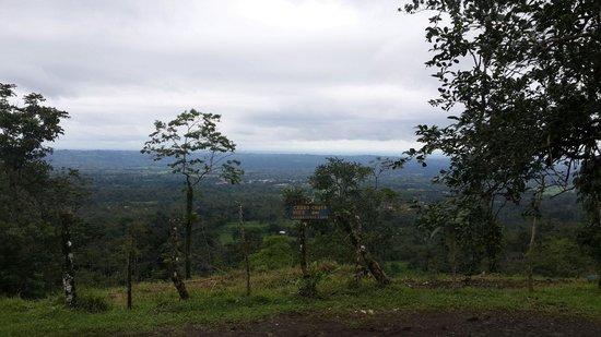 GreenLagoon Wellbeing Resort : The view