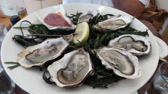 Fishy Fishy Restaurant: 6 of the best!
