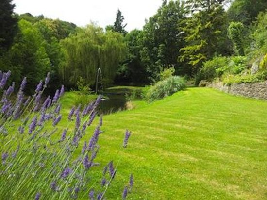 Glen Cottage, Chudleigh, Devon - relaxing garden