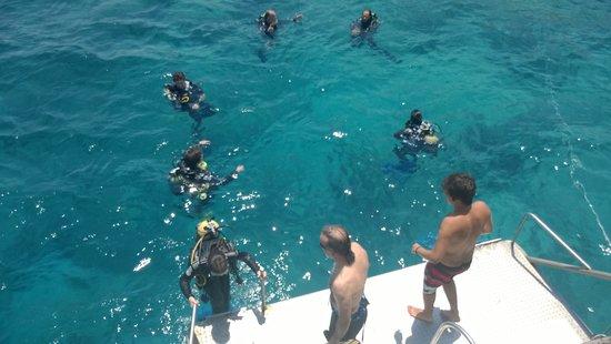 Naturablue Diving Center: diving