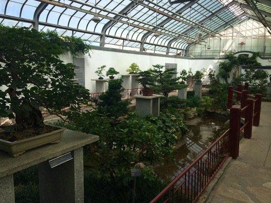 Jardin Botanique de Montreal : Serre art japonais