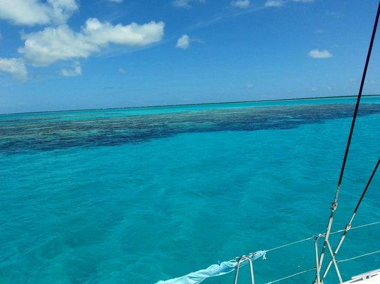 Anegada Island: Reef
