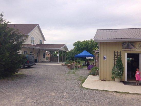 Prince Edward County Lavender: Front entrance