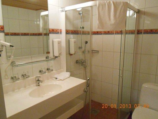 Levi Hotel Spa: Bathroom