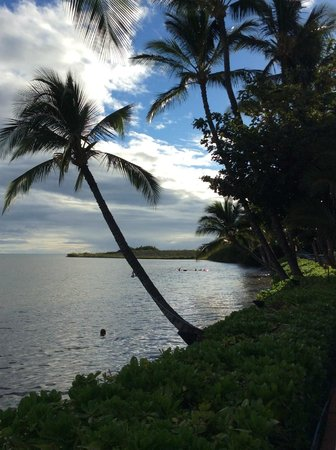Hotel Molokai : another landscape view