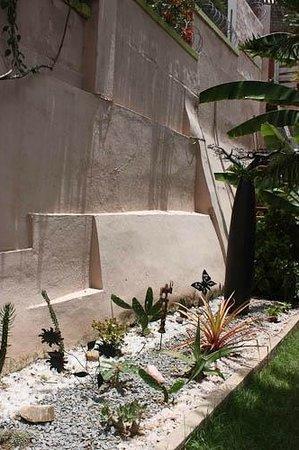 Villa Iarivo : Jardin cactés