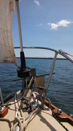 Dreamcatcher Sailing Day Trips : Gorgeous day on the bay!