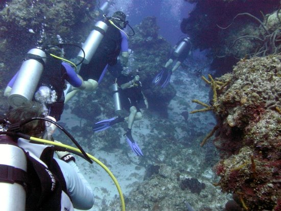 Dive Shop Mexico: Cozumel