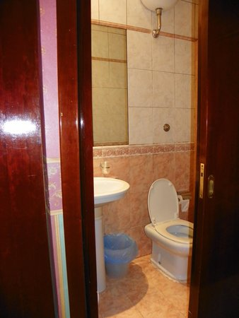 Virginia Hotel: Bathroom-small but workable